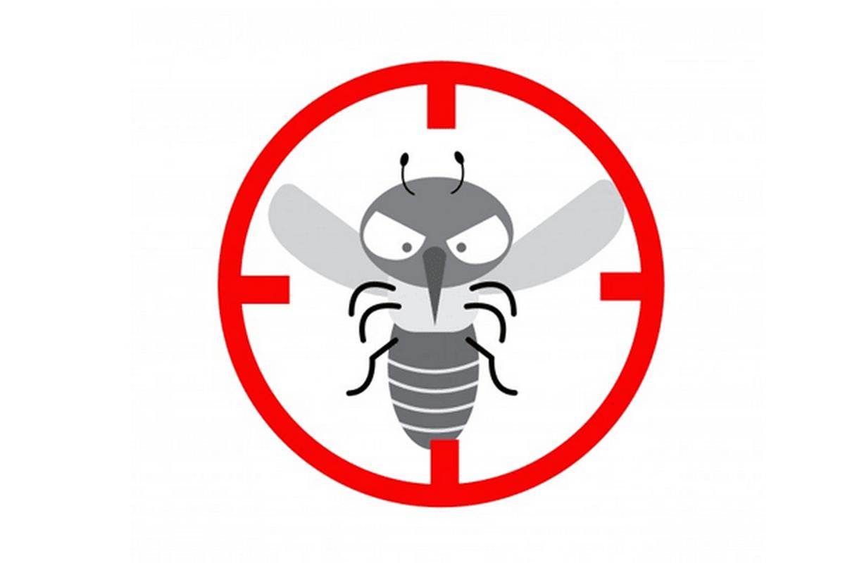 Κρατήστε τα κουνούπια μακριά με όπλο το Jungle Formula!