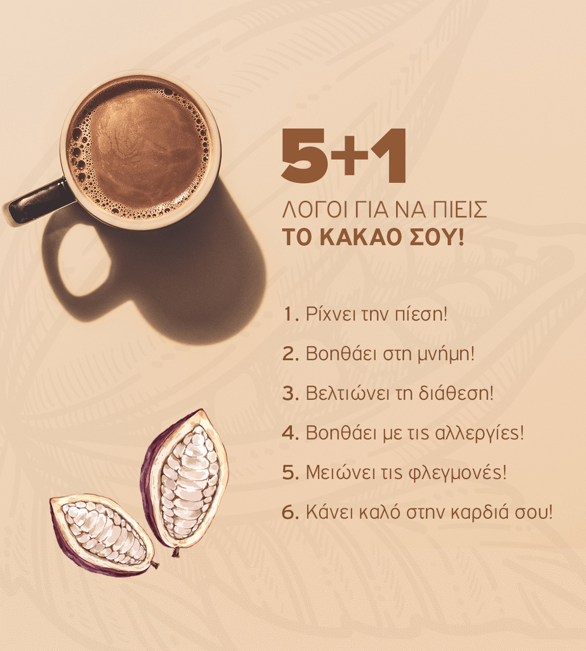 cocoainfographic