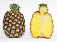 pineapple---ananas