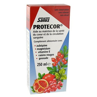 Power Health Floradix Protecor 250 ml