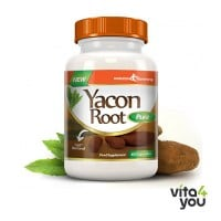 Evolution Slimming Yacon Root Pure 500 mg 60 caps