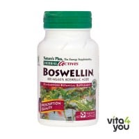 Nature's Plus Boswellin 300mg 60 veg.caps