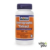 Now Andrographis Extract 400 mg 90 Vcaps