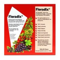 Power Health Floradix 10 x 20ml