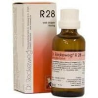 Dr. Reckeweg R28 Drops 50 ml