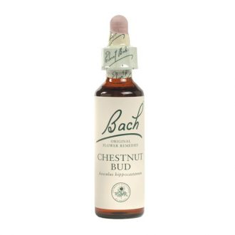 Dr Bach Chestnut Bud Flower Remedy 20 ml