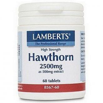 Lamberts Hawthorn 2500 mg 60 tabs