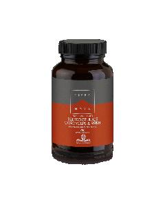 Terra Nova Beetroot juice Cordyceps & Reishi 70 gr