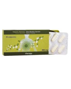Mastiha Therapy Chios Mastiha 350 mg 30 caps