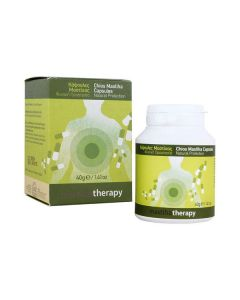 Mastiha Therapy Chios Mastiha 350 mg 90 caps
