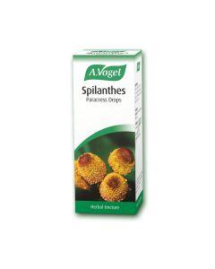 A. Vogel Spilanthes oler 50 ml