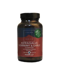 Terra Nova Astragalus Elderberry & Garlic Complex 100 veg caps