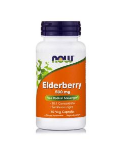 Now Elderberry Extract 500 mg 60 vcaps