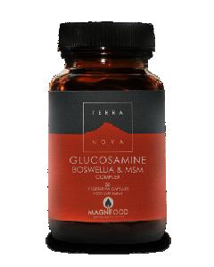 Terra Nova Glucosamine Boswellia & MSM Complex 50 veg tabs