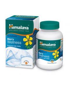 Himalaya Ashvagandha Stress Wellness 60 caps