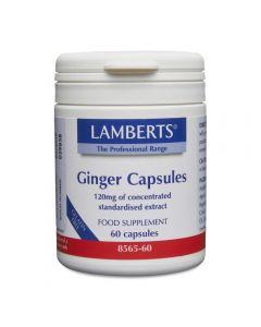 Lamberts Ginger 120 mg 60 caps