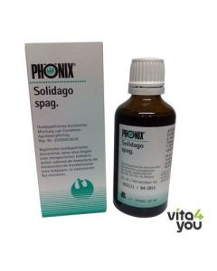 Phonix Solidago spag 50 ml