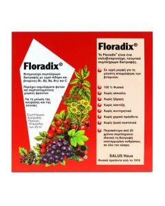 Salus Floradix 10 amp  x 20ml