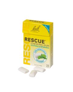 Dr Bach Rescue Chewing Gum Spearmint 25s