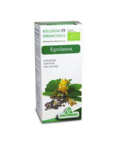 Specchiasol Echinacea angustifolia bio 50 ml