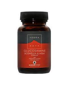 Terra Nova Glucosamine Boswellia & MSM Complex 100 veg tabs