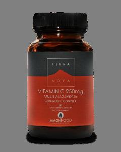 Terra Nova Vitamin C 250 mg Multi-Absorbate 30 veg tabs